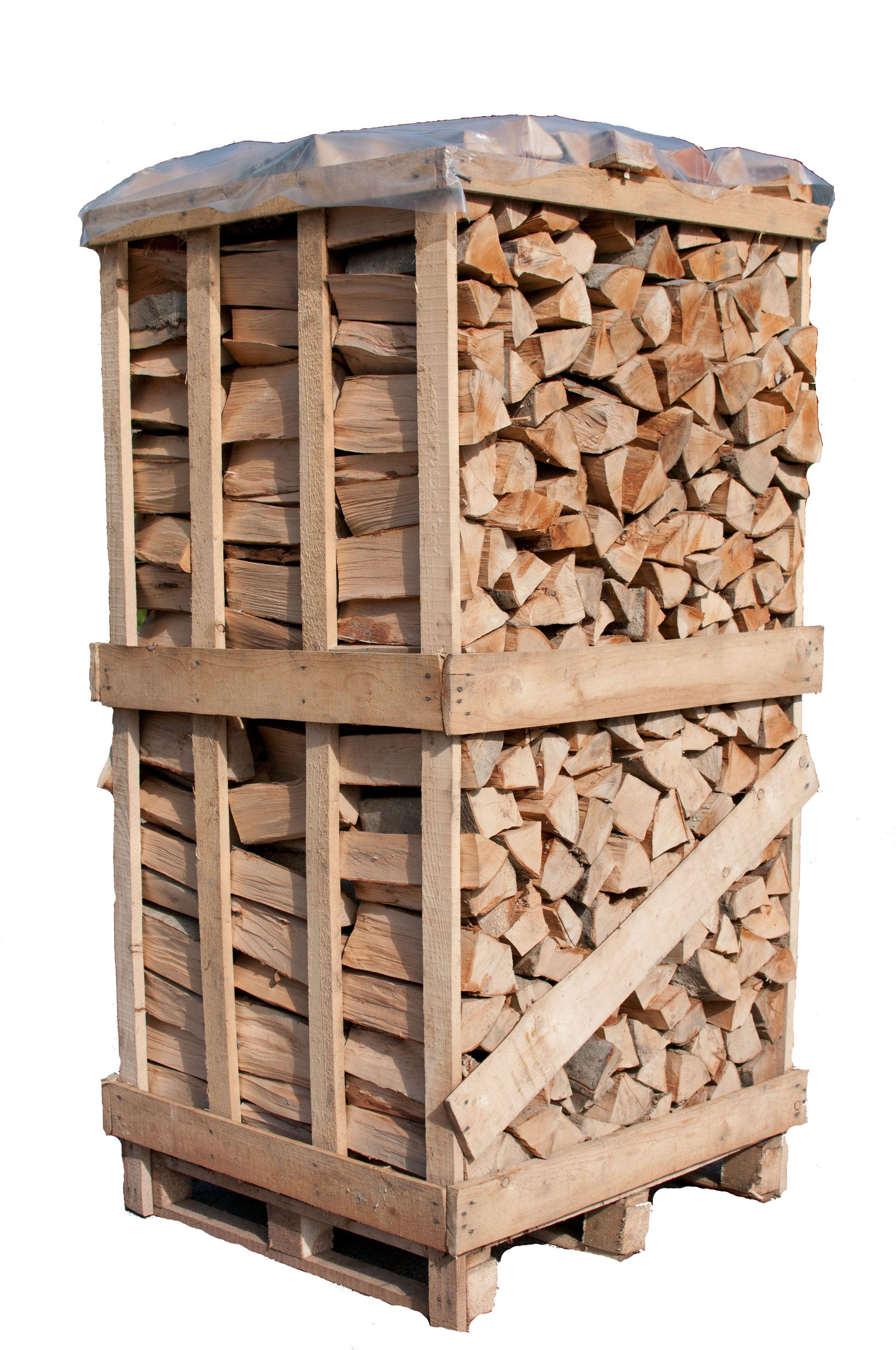 birke brennholz